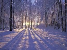 picture-peaceful-winter